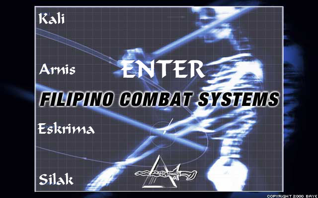 Enter Filipino Combat Systems